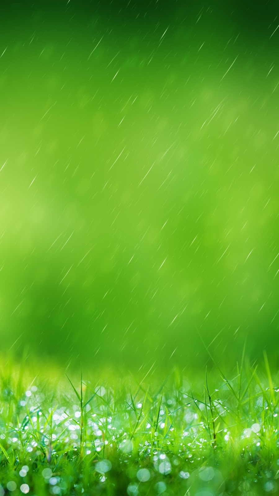4k Wallpapers For S7 Edge Samsung S7 Wallpaper Grass 317865 Hd Wallpaper Backgrounds Download