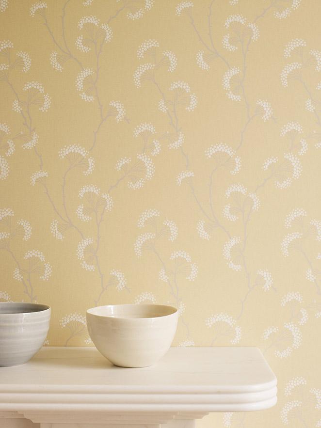 Wallpaper , HD Wallpaper & Backgrounds