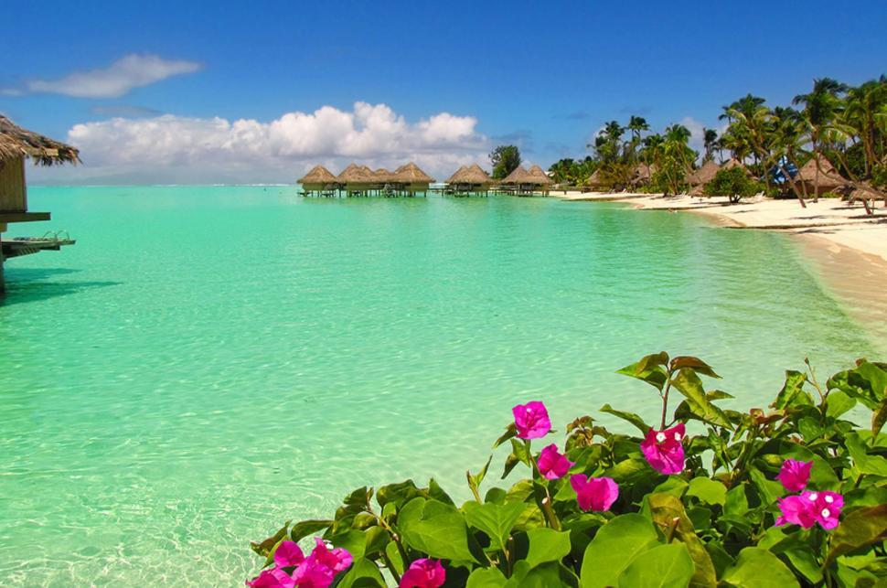 Bora Bora Beach Water Bungalows Wallpaper,exotic Hd - Bora Bora Beach , HD Wallpaper & Backgrounds