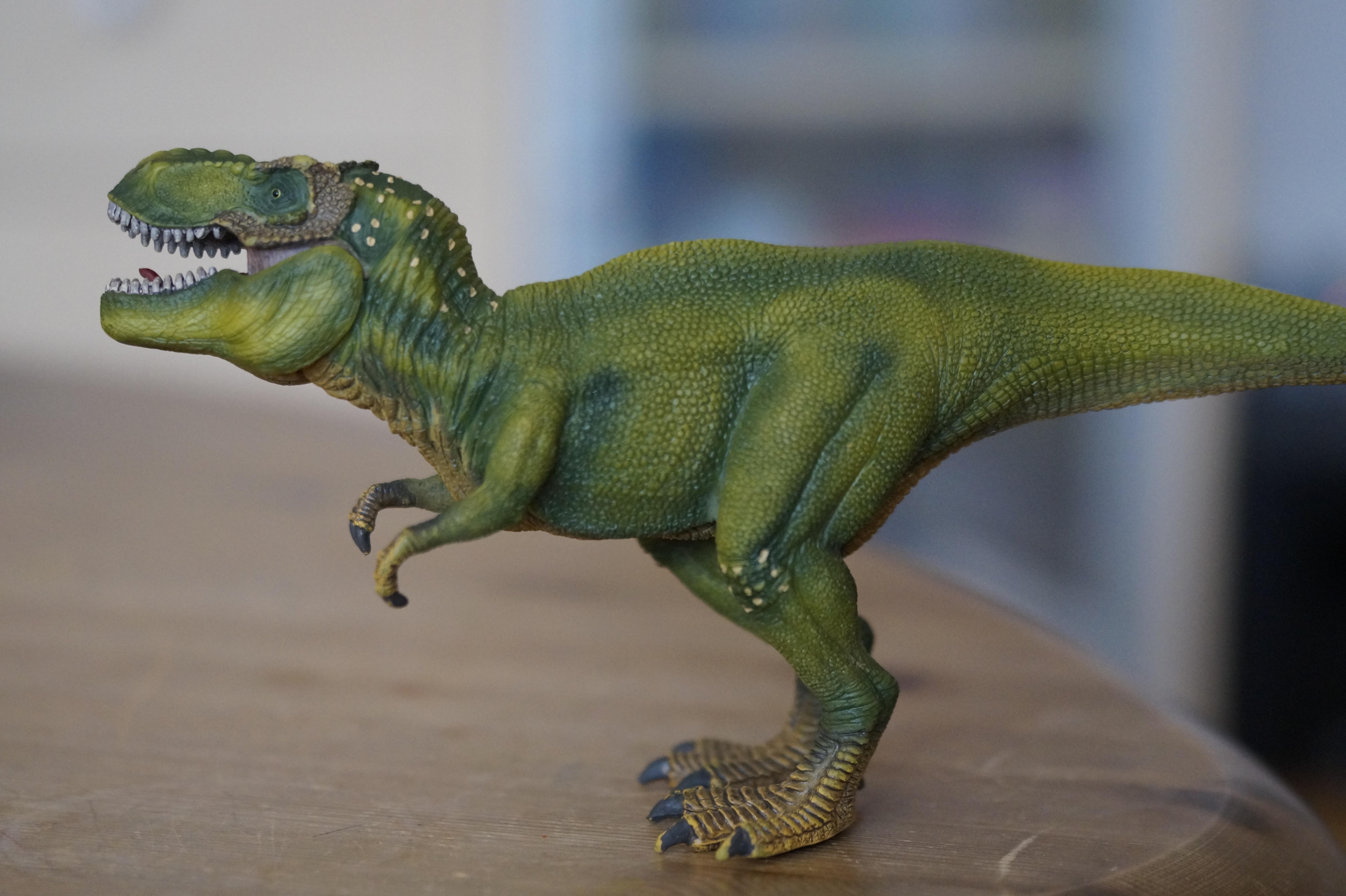 Dinosaurios Rex Verde De Juguete 3111019 Hd Wallpaper Backgrounds Download Tierra, hay setenta y cinco millones años. dinosaurios rex verde de juguete 3111019 hd wallpaper backgrounds download