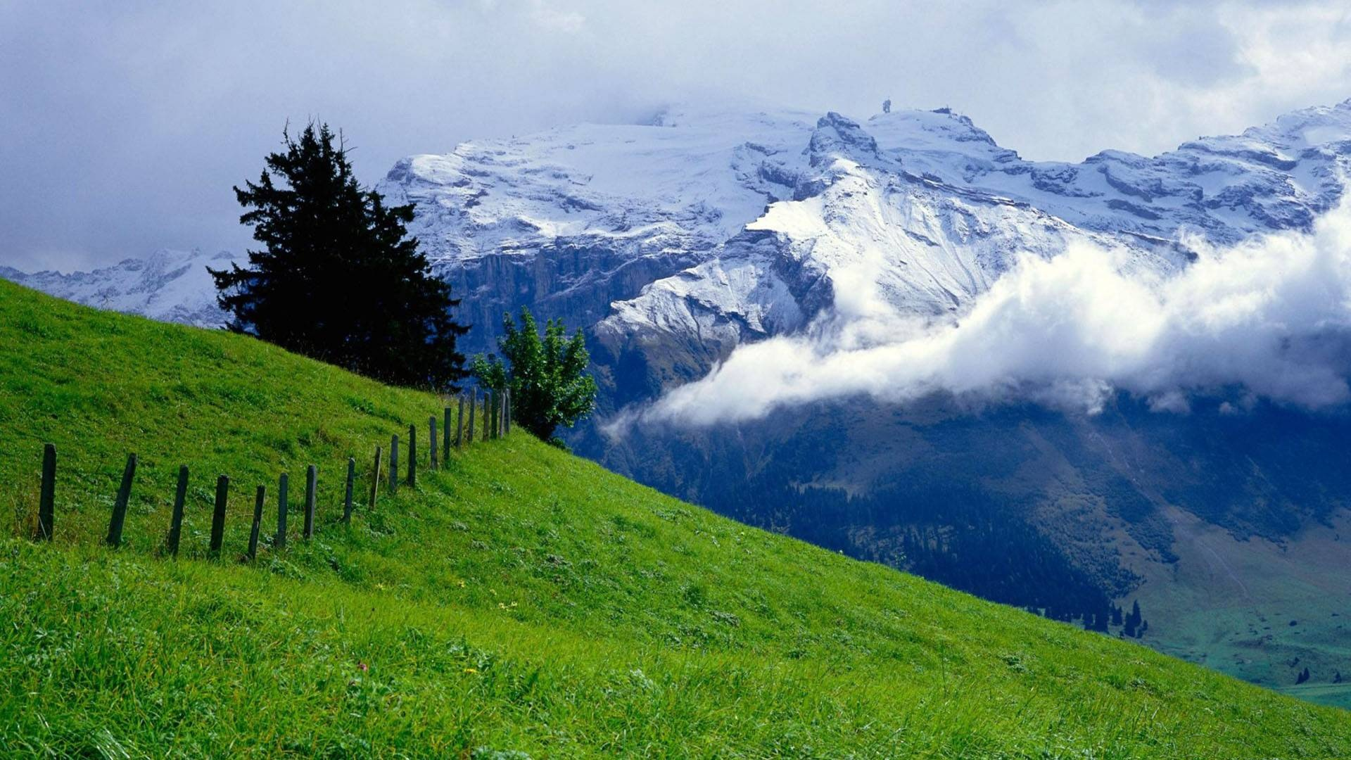 Nature Hd Wallpapers 1080p Widescreen - Nature Beauty Of Switzerland , HD Wallpaper & Backgrounds
