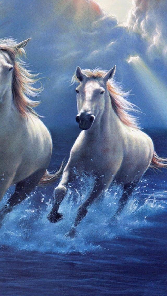 Horse Wallpaper Sky Best Wallpaper Download White Running Ultra Hd Horse Hd 3150853 Hd Wallpaper Backgrounds Download