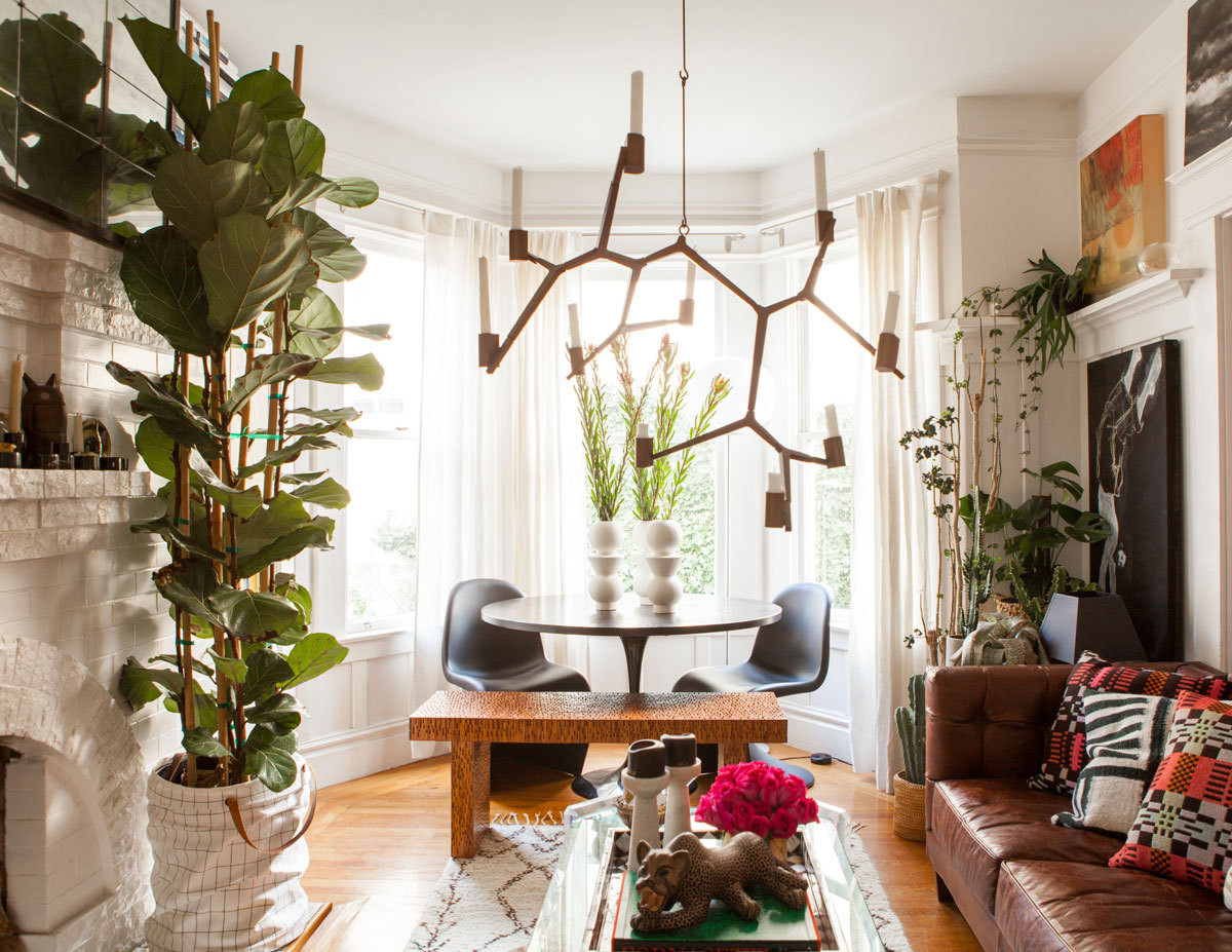 An Unusual Assemblage Of Plantings, Artworks, And Personal - San Francisco Living Room , HD Wallpaper & Backgrounds