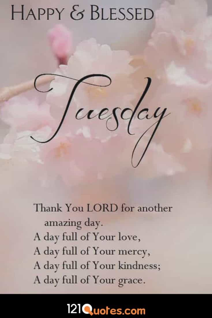Happy And Blessed Tuesday Wallpaper - Blessing Happy Tuesday , HD Wallpaper & Backgrounds