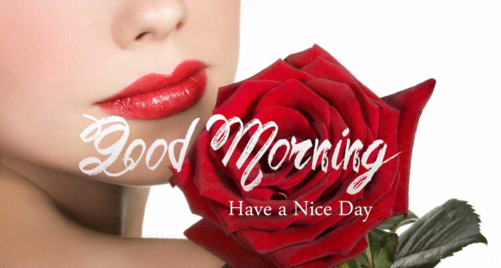 Good Morning Wallpaper - Beautiful Lovely Beautiful Good Mornings , HD Wallpaper & Backgrounds