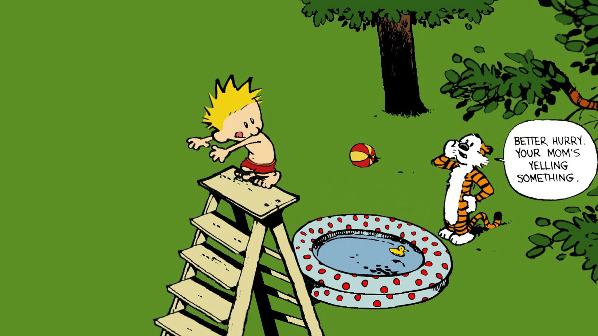 Calvin And Hobbes Wallpapers Pc 325320 Hd Wallpaper