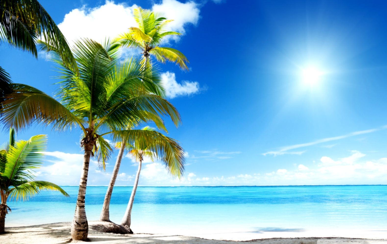 Tropical Beach Paradise ❤ 4k Hd Desktop Wallpaper For - Tropical Beach Paradise , HD Wallpaper & Backgrounds