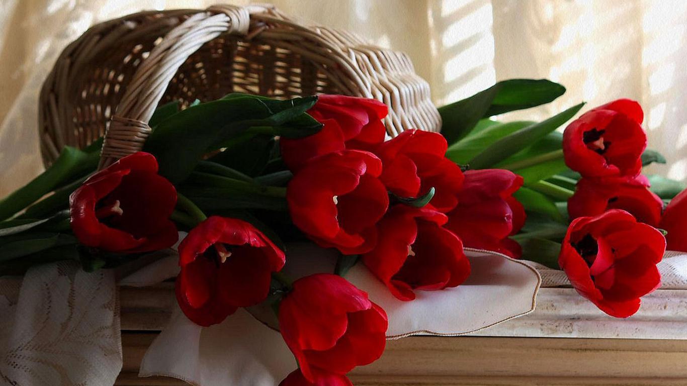 Good Night Rose Wallpaper - Flower Rose Good Night , HD Wallpaper & Backgrounds