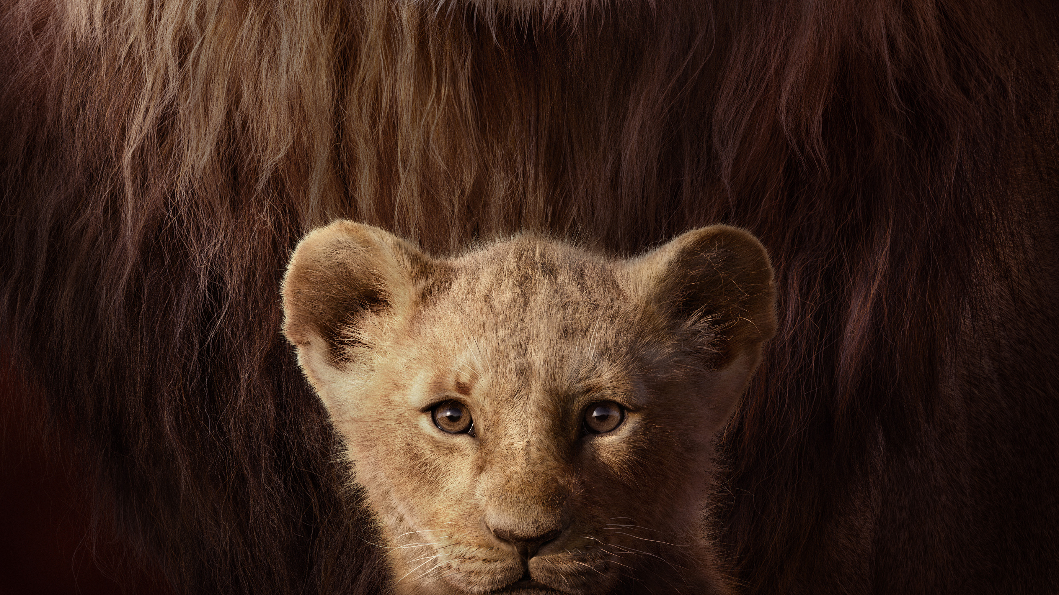Movie Poster Lion King 2019 , HD Wallpaper & Backgrounds