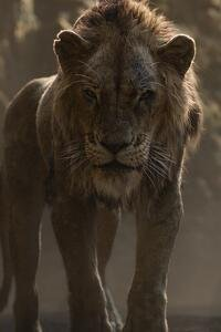 Scar From Lion King 2019 , HD Wallpaper & Backgrounds