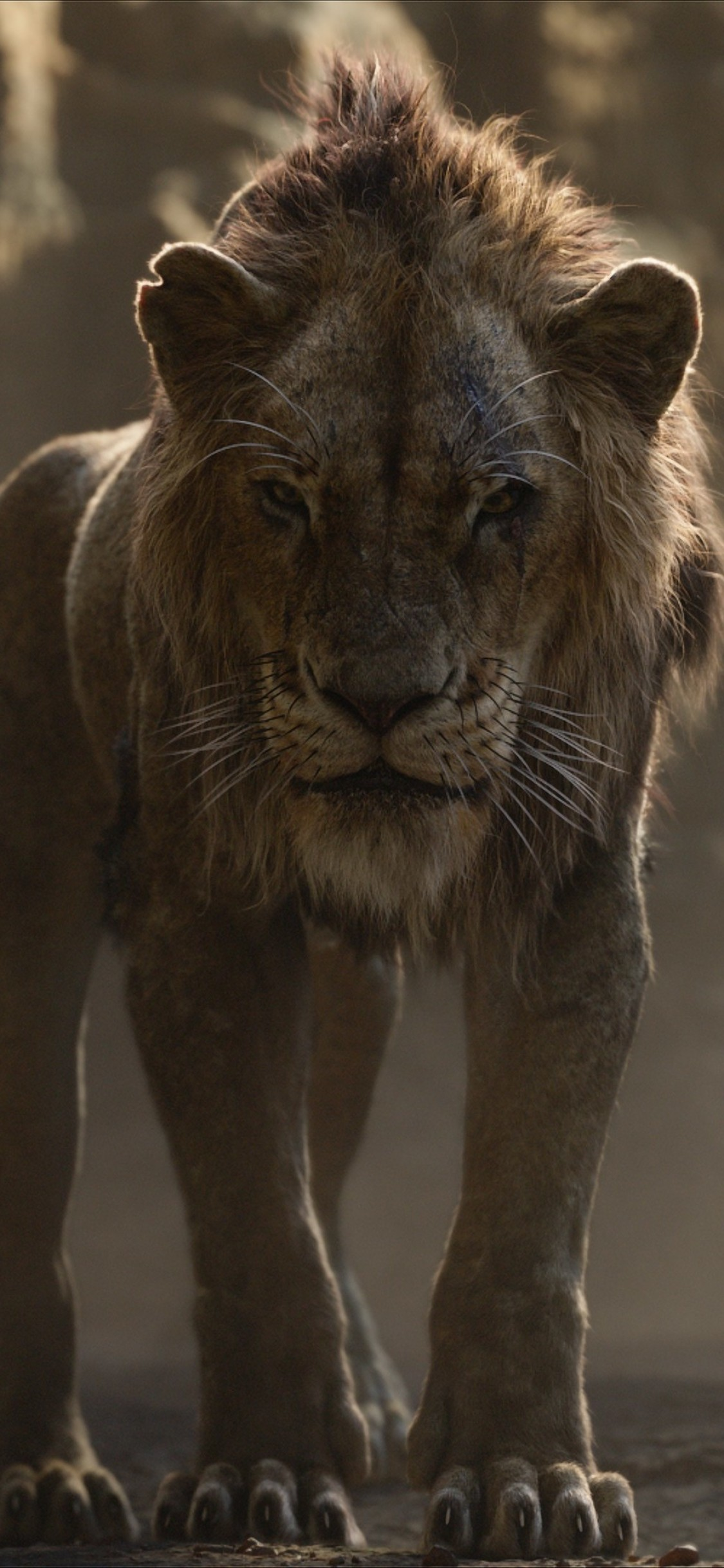 Scar From Lion King 2019 3255695 Hd Wallpaper Backgrounds Download
