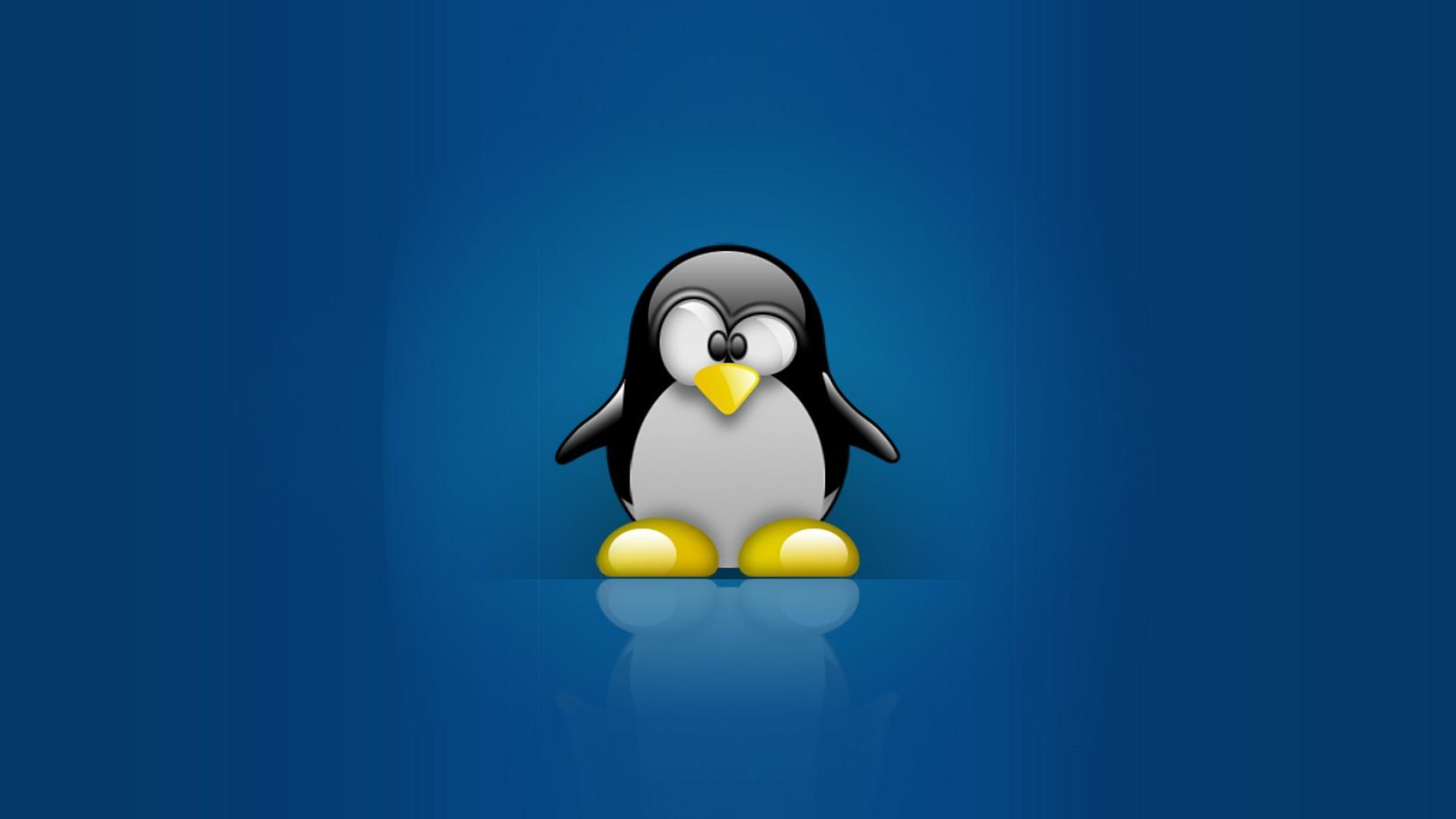 Linux Tux Penguins Computer Hd Wallpaper - Linux Penguin , HD Wallpaper & Backgrounds