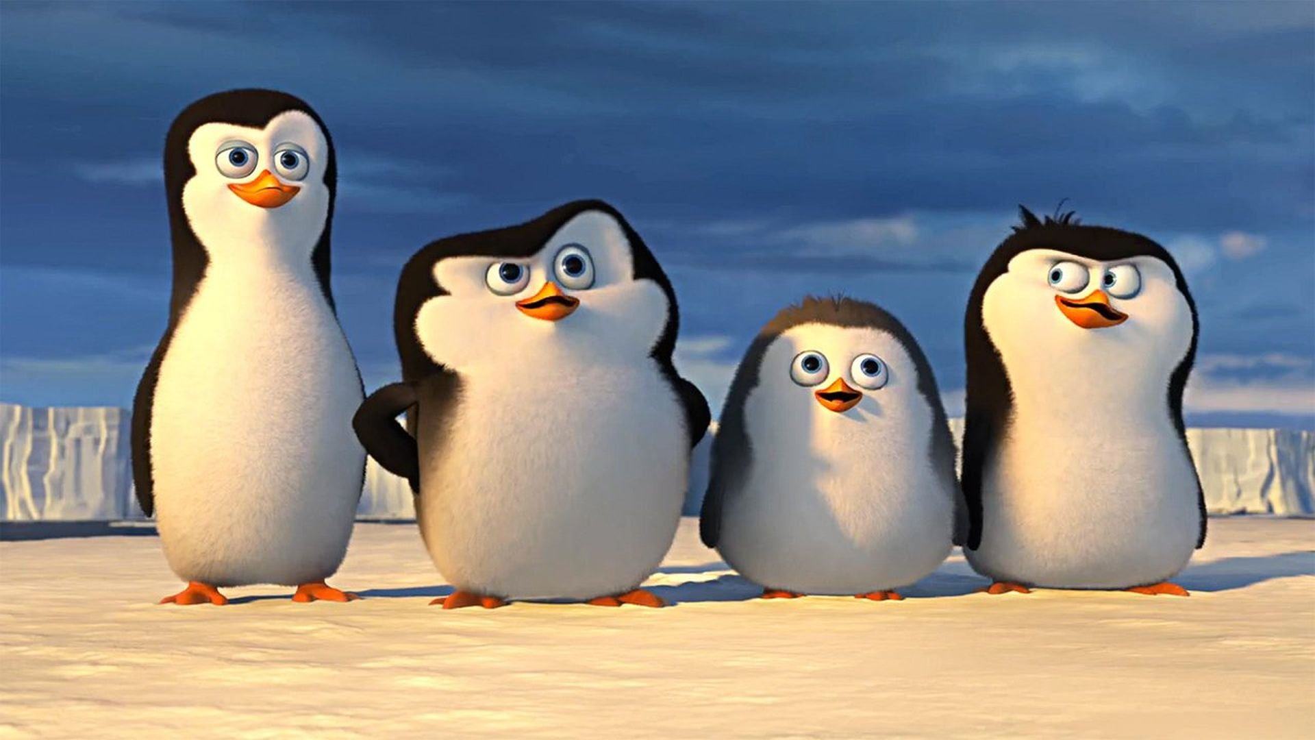 Free Penguins Of Madagascar High Quality Wallpaper - Penguin Of Madagascar Kid , HD Wallpaper & Backgrounds