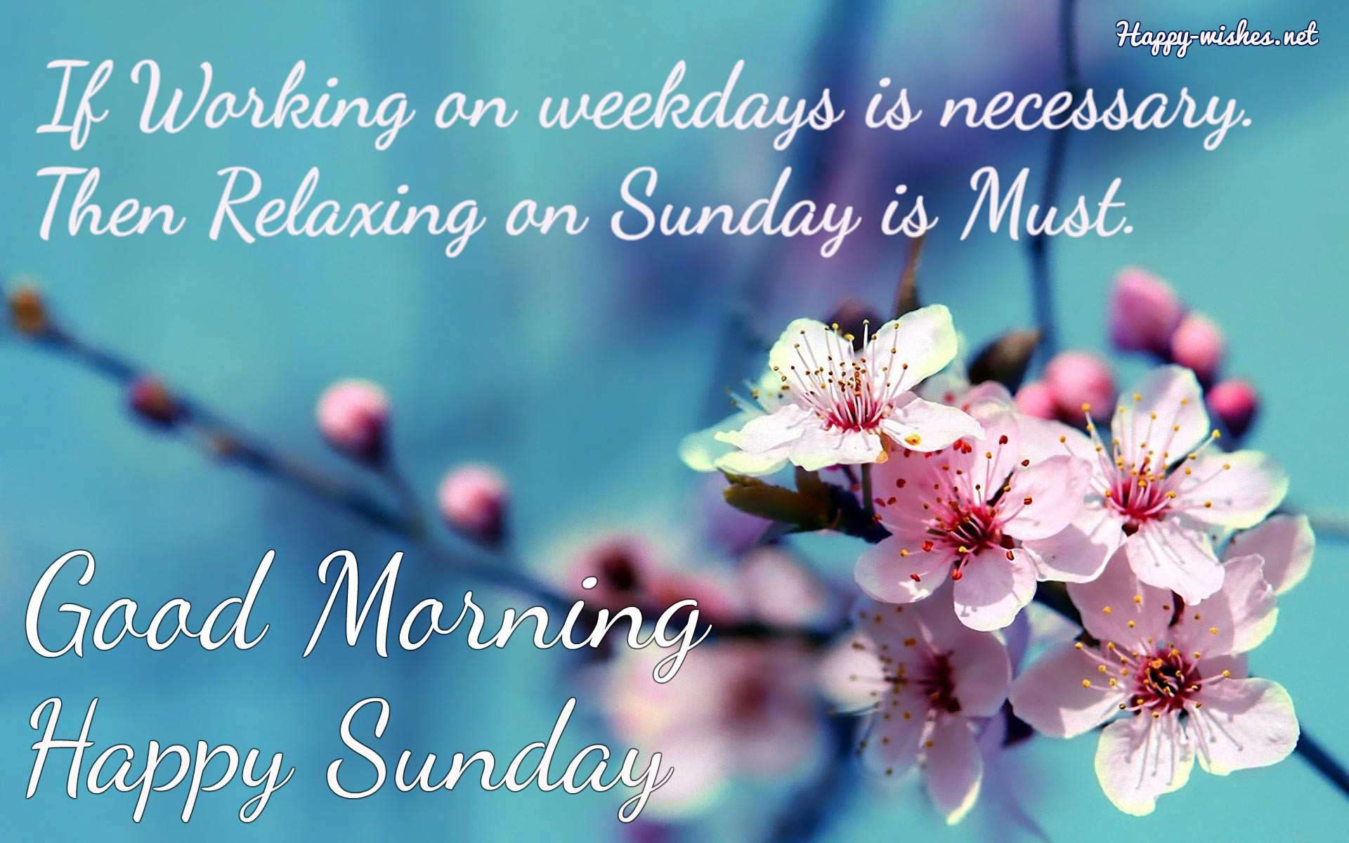Good Morning Wishes On Sunday Quotes - Sunday Morning Wishes Quotes , HD Wallpaper & Backgrounds