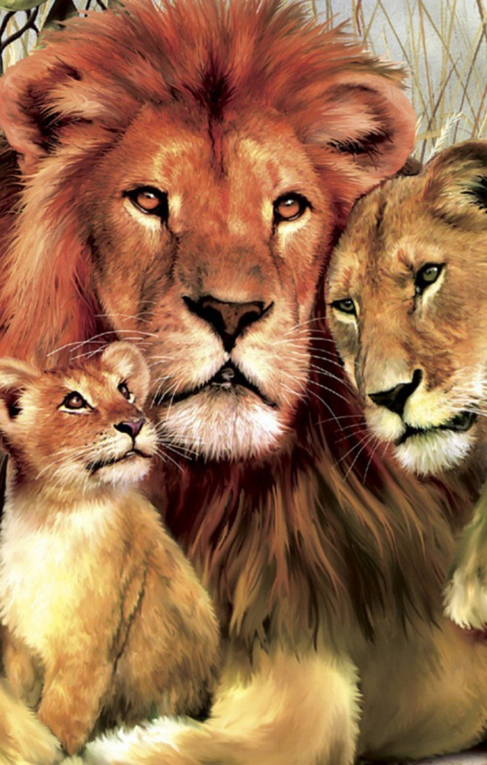 Lion Family Hugs And Love Wild Animals Hd Mobile Wallpaper - Lion Family Wallpaper Hd , HD Wallpaper & Backgrounds