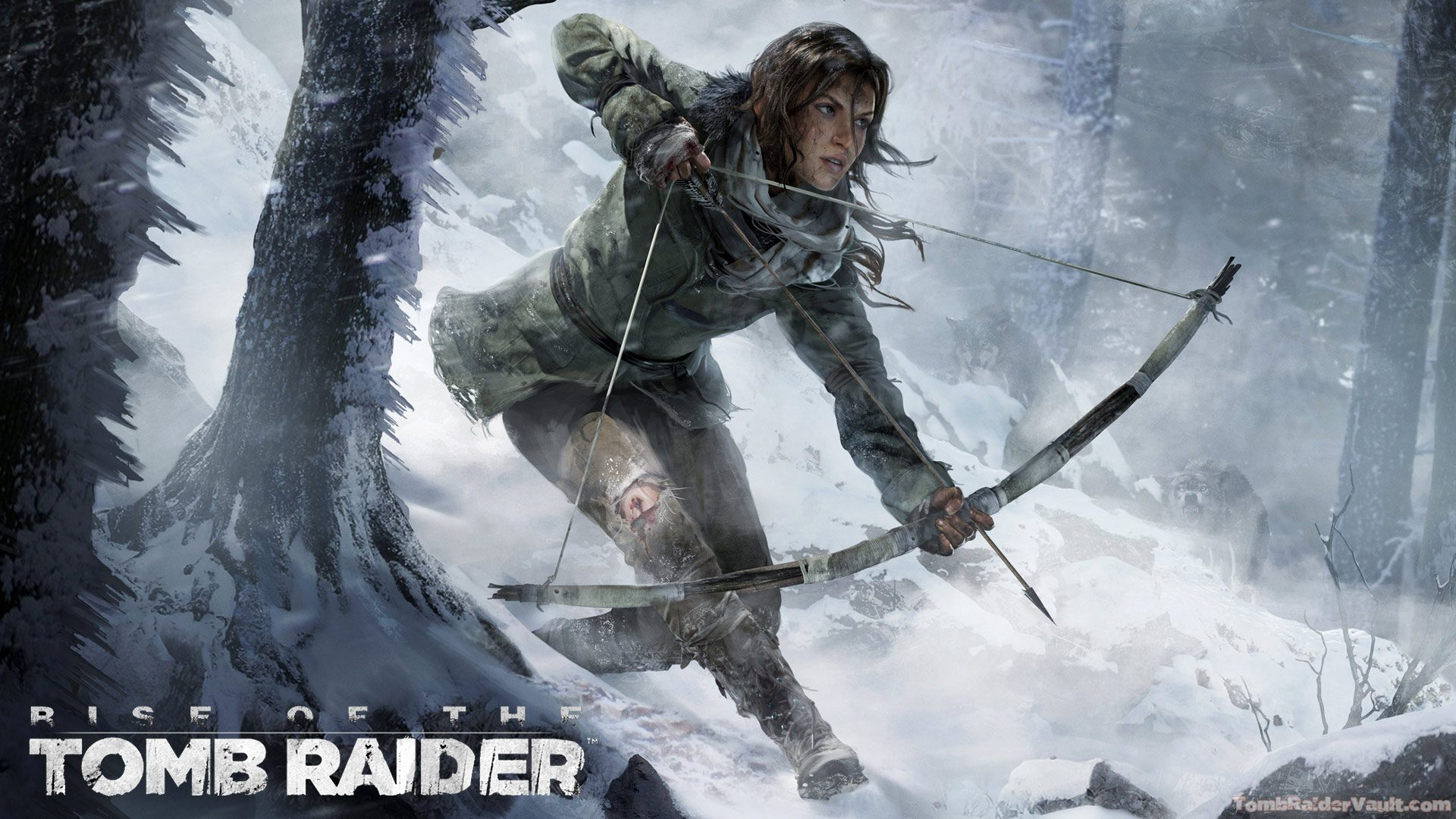 Rise Of The Tomb Raider , HD Wallpaper & Backgrounds
