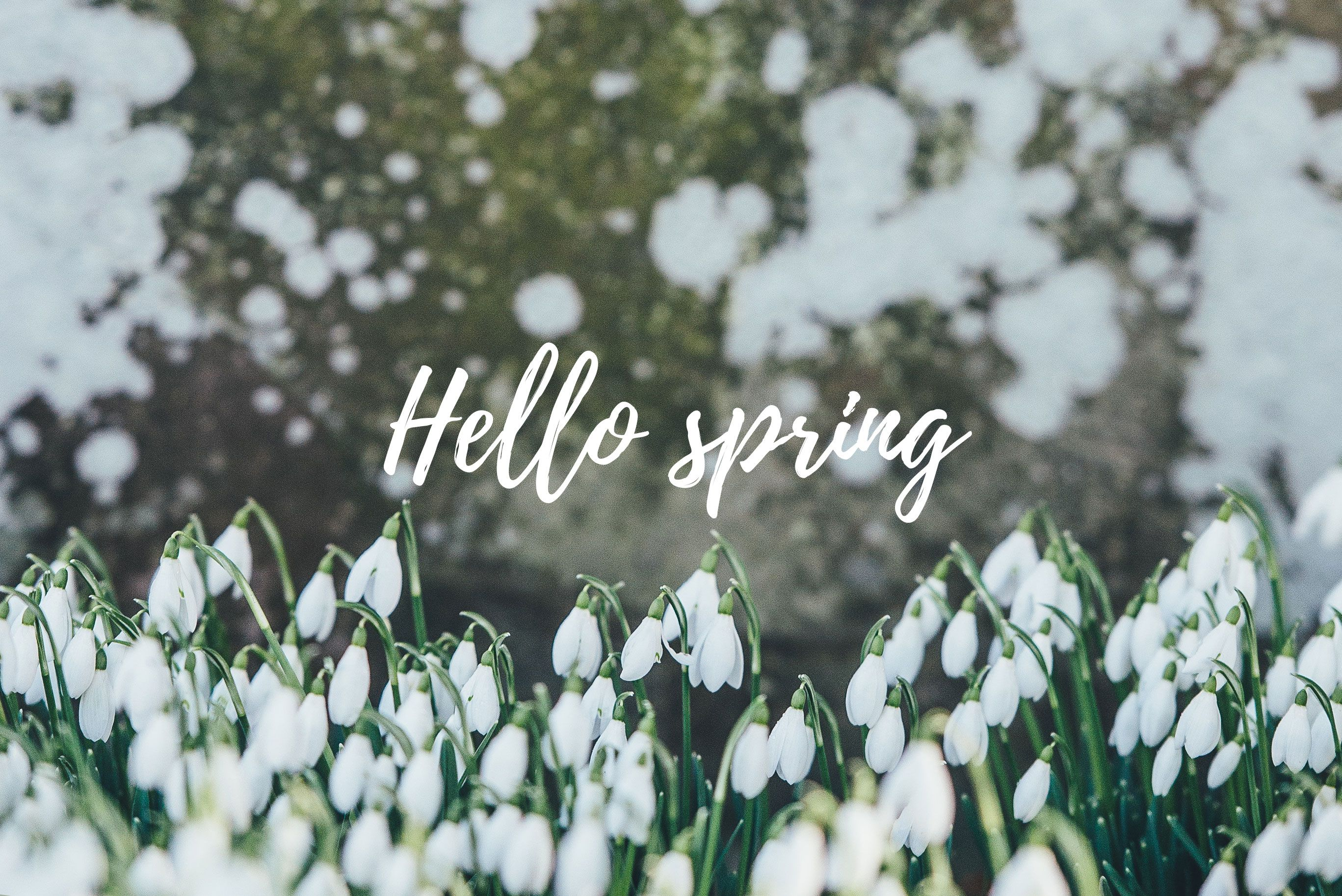 Aesthetic Spring Computer Backgrounds , HD Wallpaper & Backgrounds