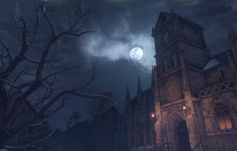 Photo Wallpaper Night, Tree, The Moon, University, - Plague Tale Innocence Find University , HD Wallpaper & Backgrounds