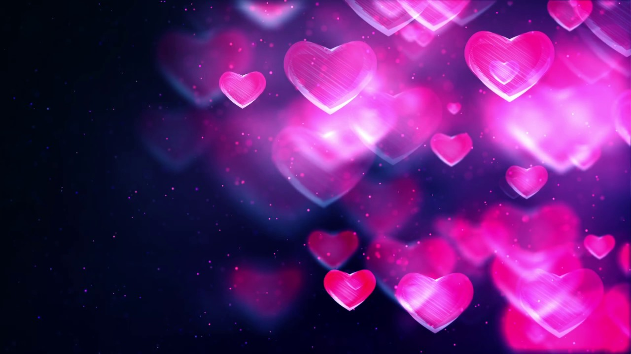 Free Love Theme Valentine Day Video Background Video