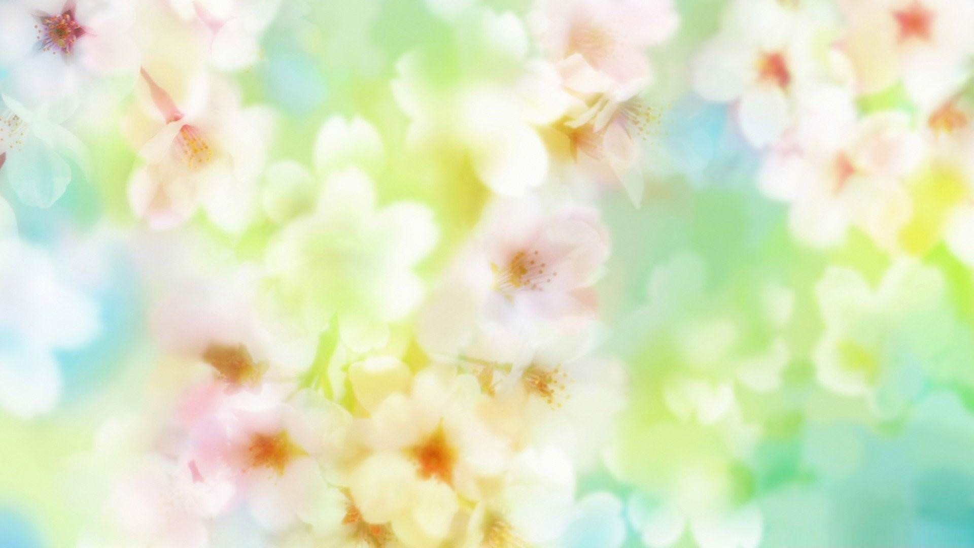 Beautiful Blossom Flowers-spring Theme Desktop Wallpaper - Meaning Of Yugesh , HD Wallpaper & Backgrounds