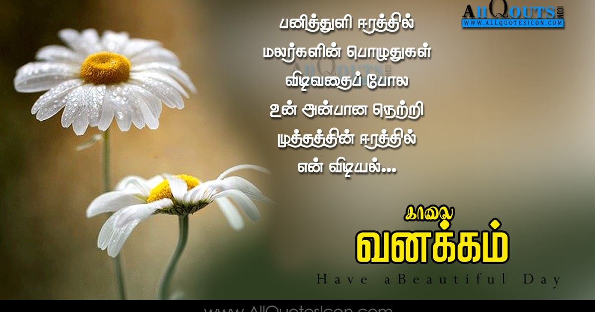 Love Failure Quotes In Telugu Wallpapers Latest Love ...