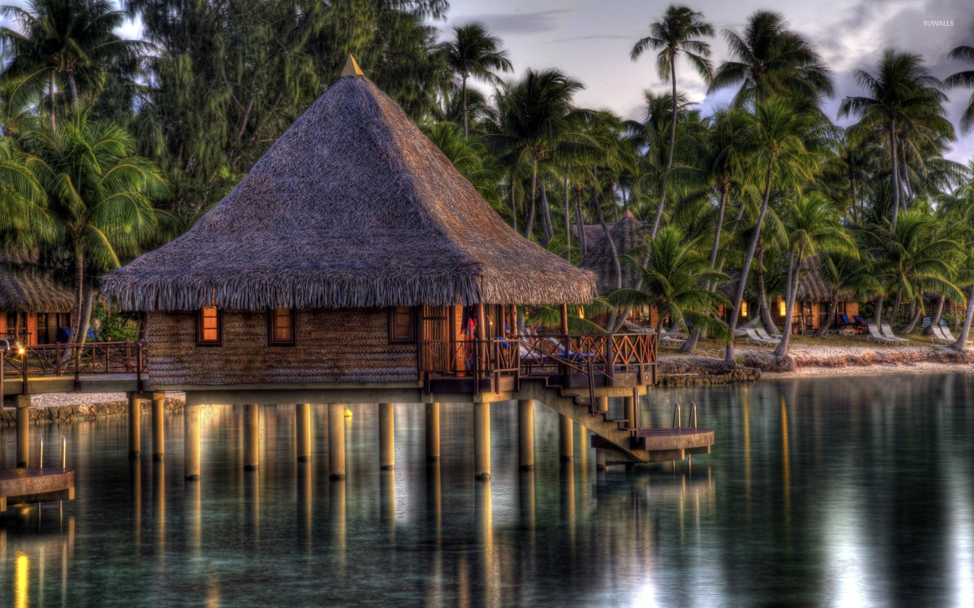 Hut In Maldives Wallpaper - Attalea Speciosa , HD Wallpaper & Backgrounds