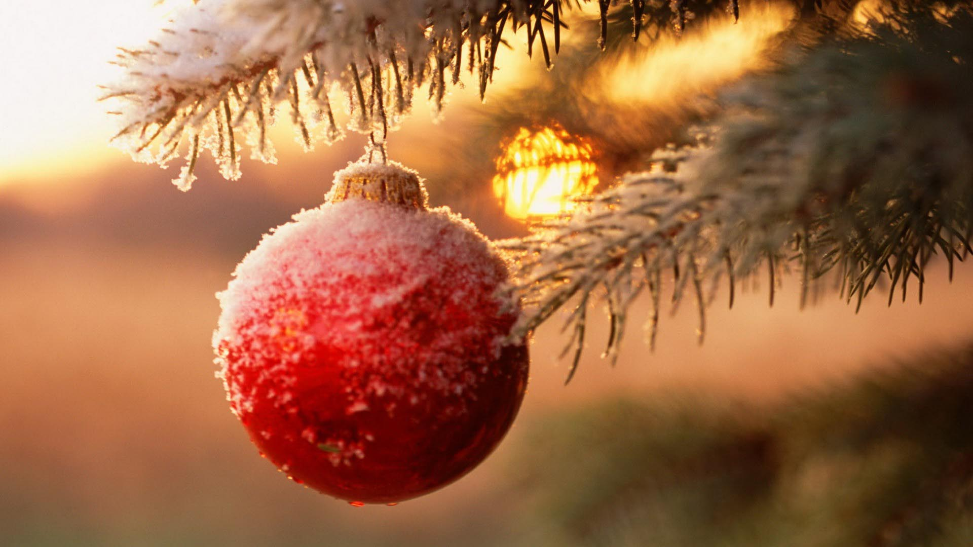 Christmas Wallpaper Tumblr , HD Wallpaper & Backgrounds
