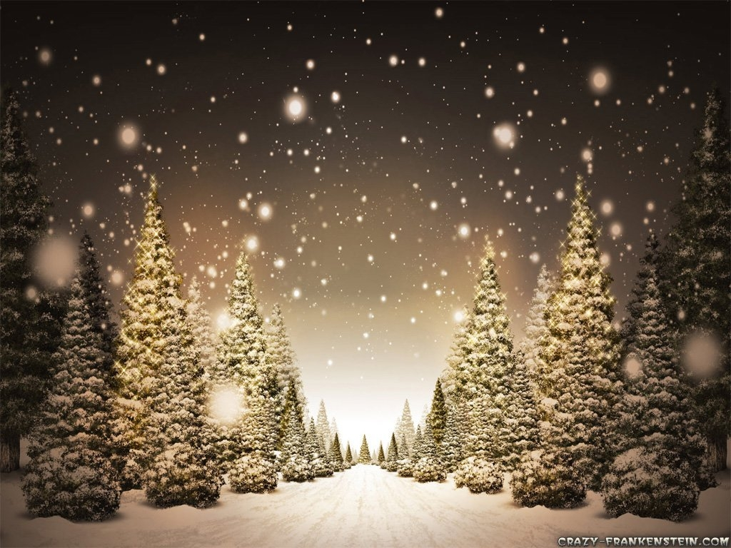 Christmas Wallpaper Widescreen Christmas Trees In Snow