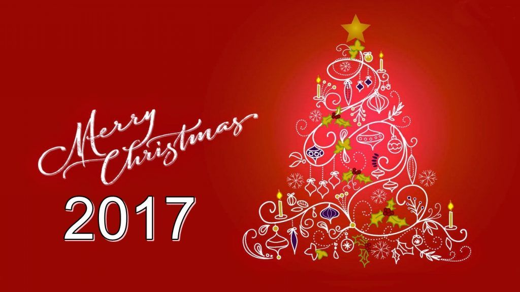 Merry Christmas Images Pictures Photos Hd Wallpapers - Merry Christmas Eve Flowers , HD Wallpaper & Backgrounds