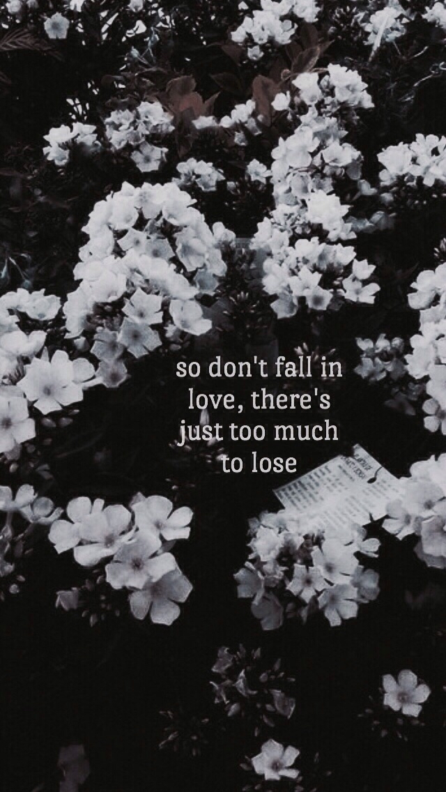 1024 - So Don T Fall In Love There's Just Too Much To Lose , HD Wallpaper & Backgrounds