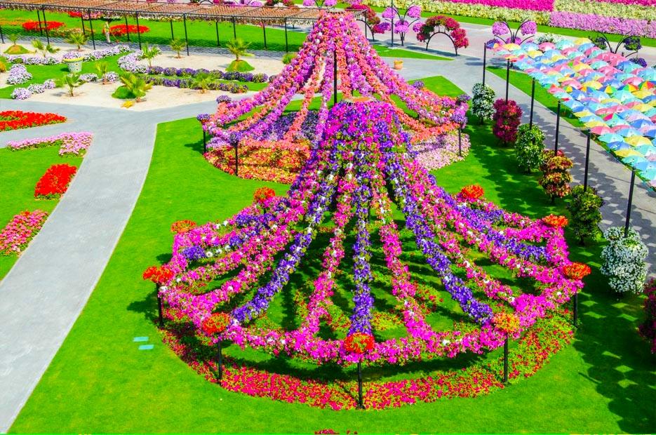 Dubai Miracle Garden Free Hd Wallpapers For Desktop - World Beautiful Flowers Garden , HD Wallpaper & Backgrounds