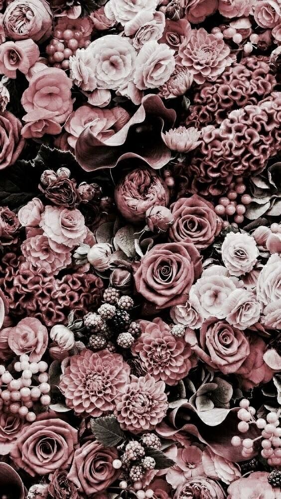 @ninarose15 ☆♡☆ Nature Wallpaper Rose, Pink Flower - Rose Gold Flower Phone , HD Wallpaper & Backgrounds
