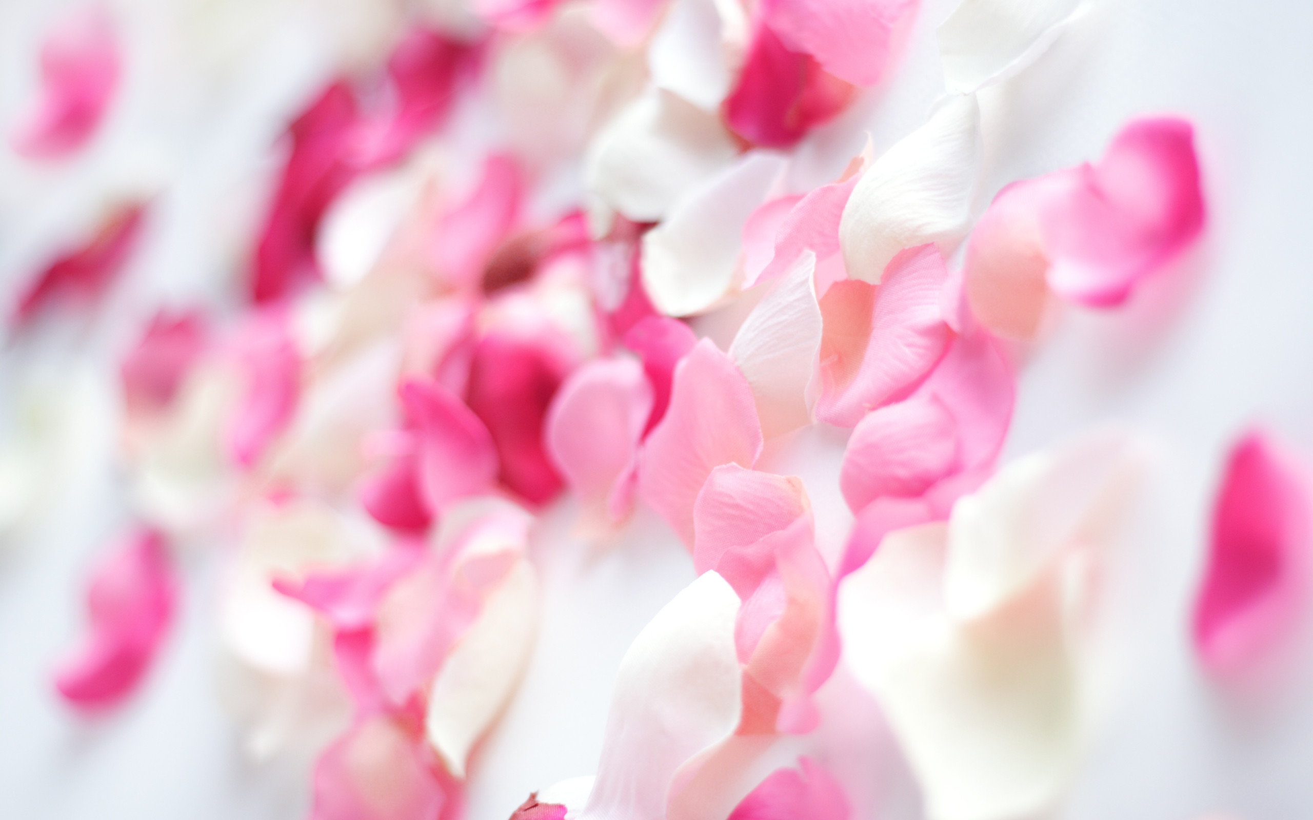 Pink Flower Wallpapers Mobile - Fond D Écran Beauté Soins , HD Wallpaper & Backgrounds