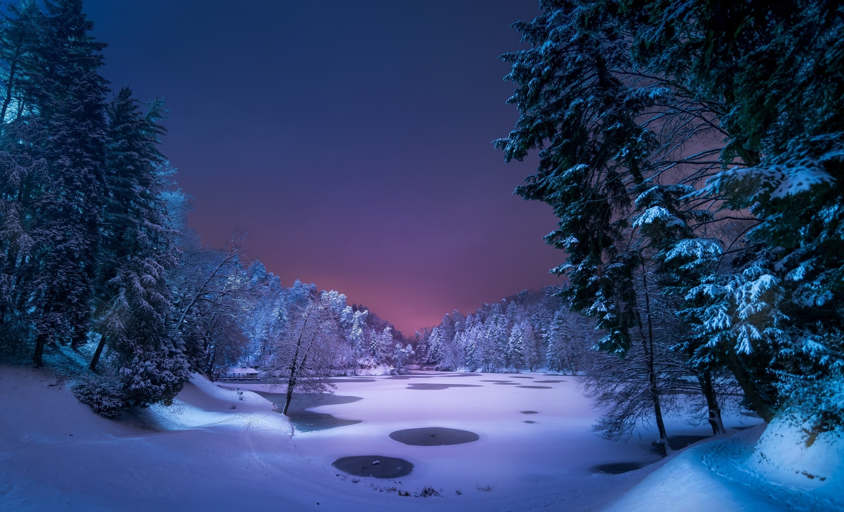 Night Landscape Snow Ice Winter Trees Nature 365983