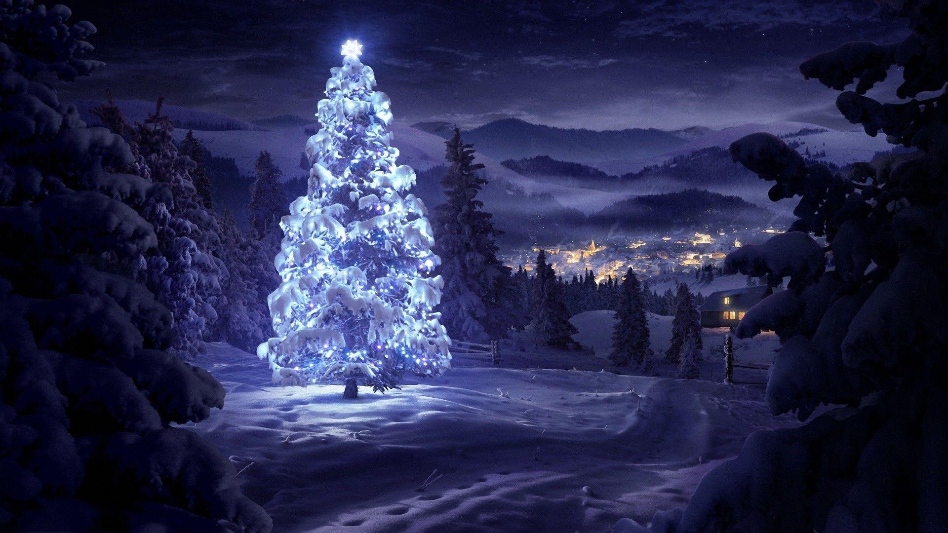 50 Beautiful Christmas Tree Wallpapers Snow Night