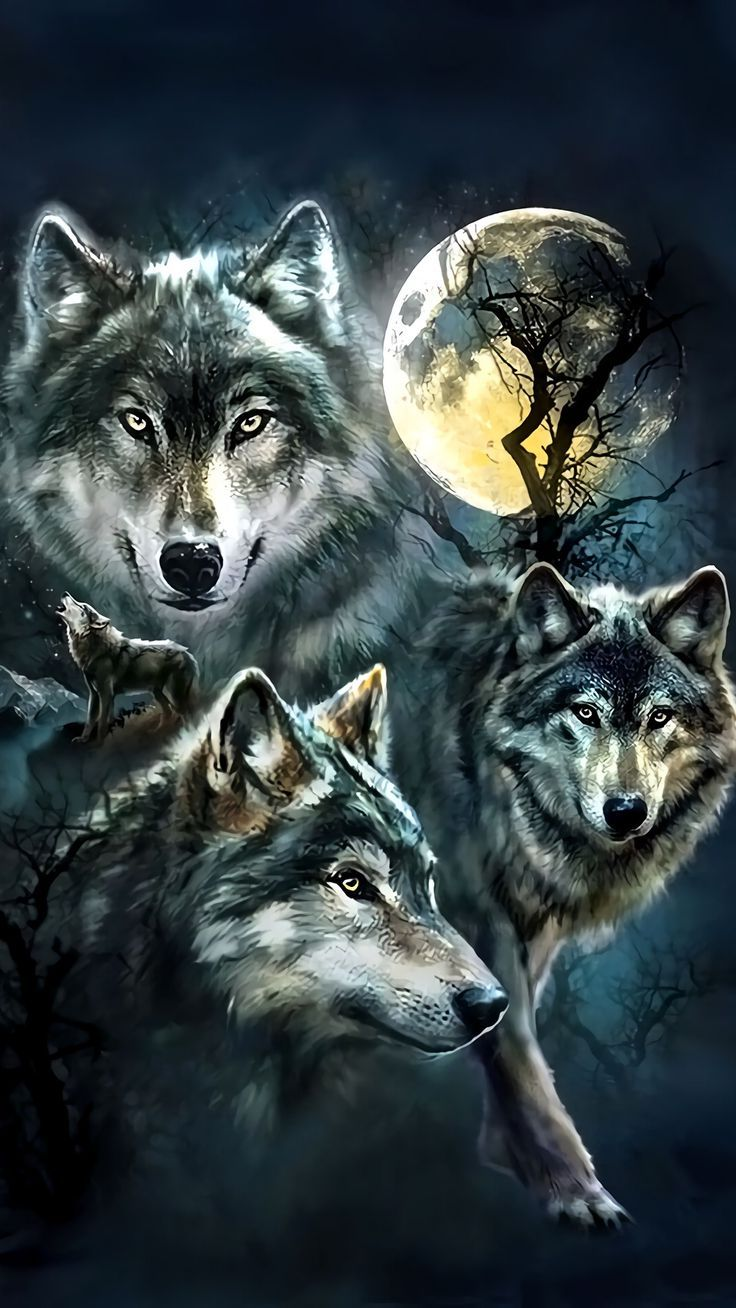 Wolf Wallpaper For Iphone Iphone Wallpaper Wolf 369241