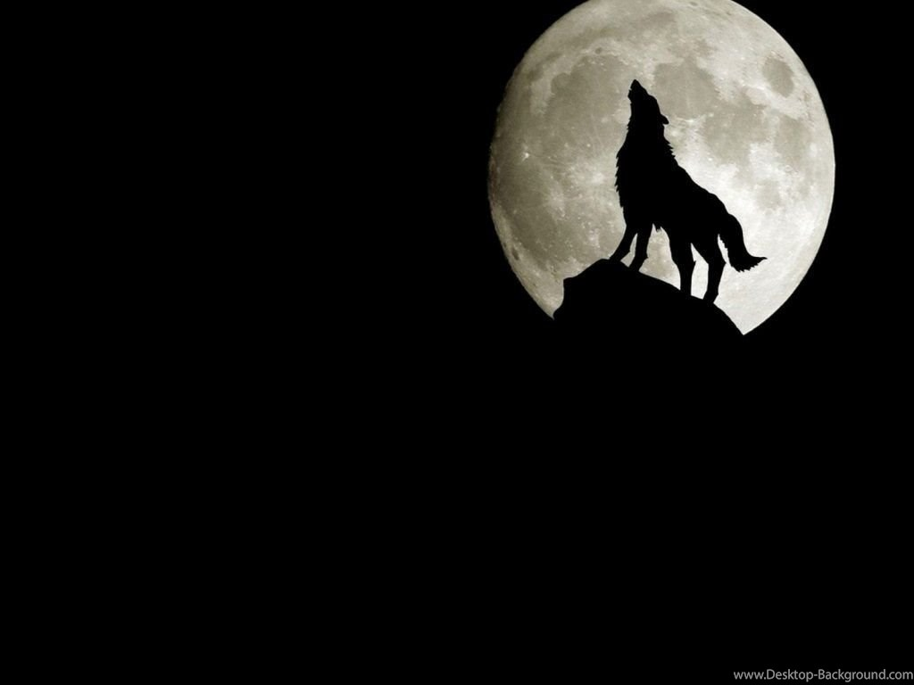 3d Wolf Wallpapers Wallpapers Wallpapers Desktop Background Background Black Wolf Wallpaper Hd 369260 Hd Wallpaper Backgrounds Download
