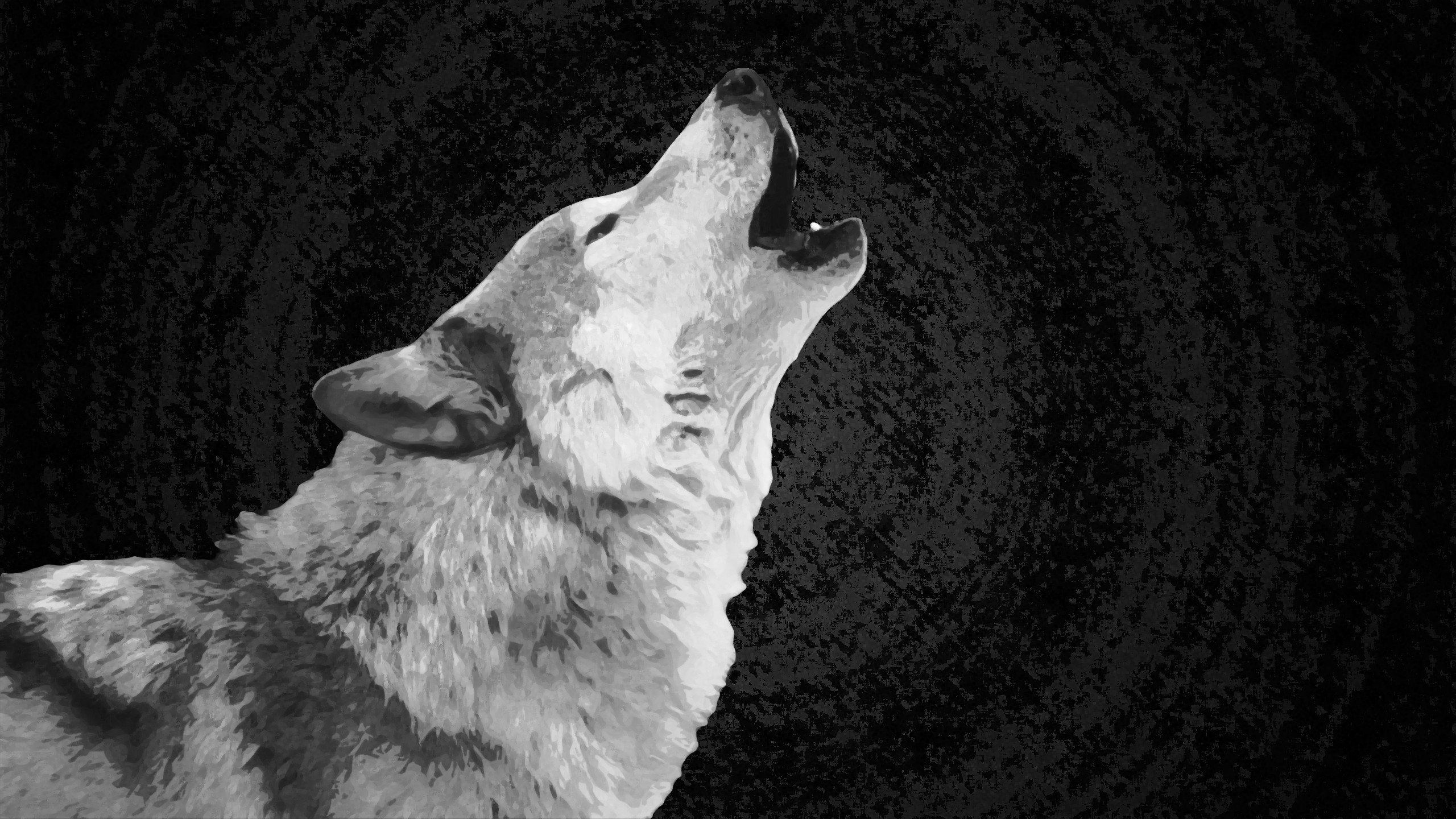 3d Hd Wolf Wallpaper Black And White Wolf 369438 Hd Wallpaper Backgrounds Download