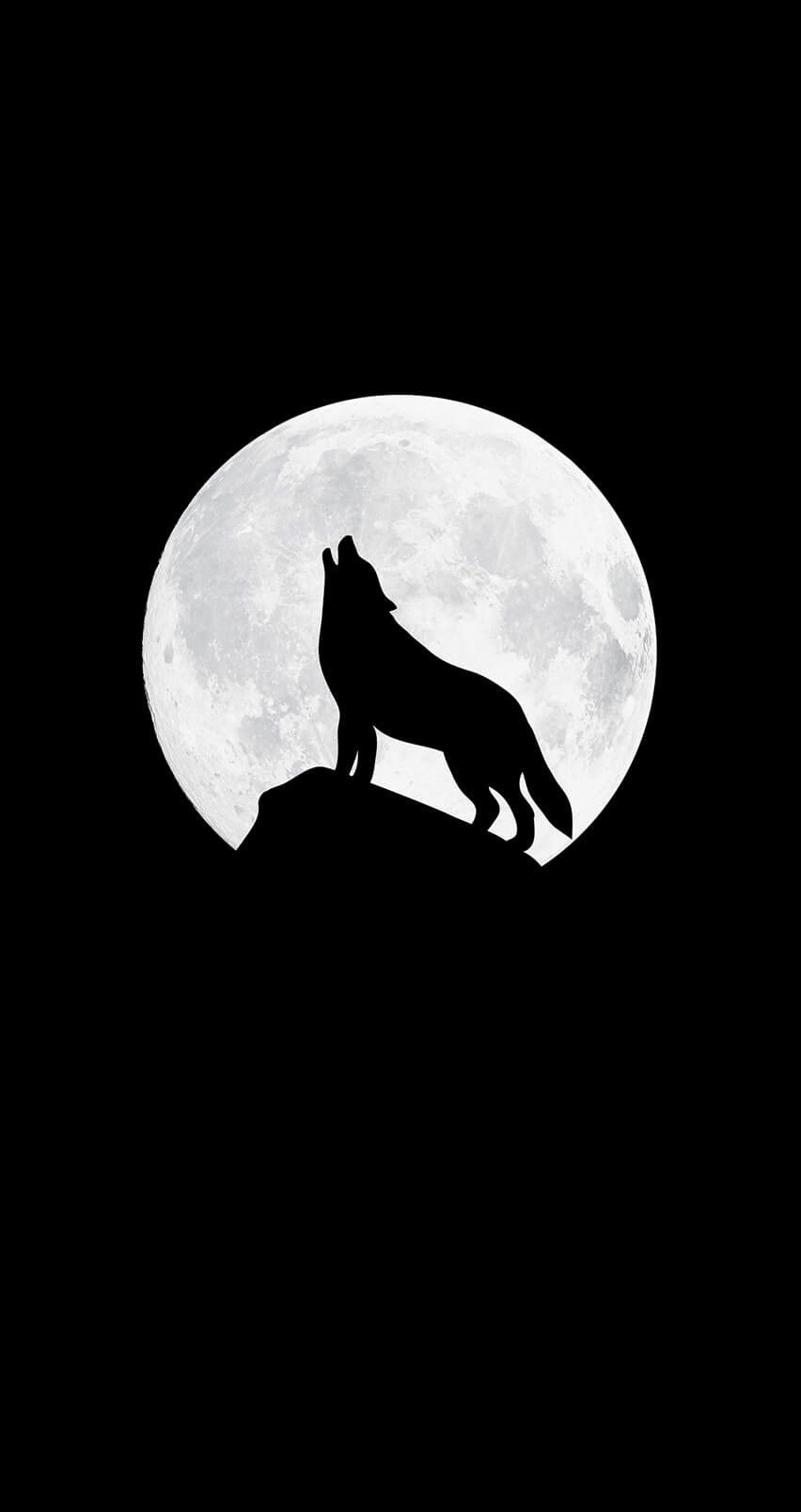 Wolf Background, Black Wallpaper Iphone Dark, Minimalist - Wolf Phone Wallpaper 4k , HD Wallpaper & Backgrounds