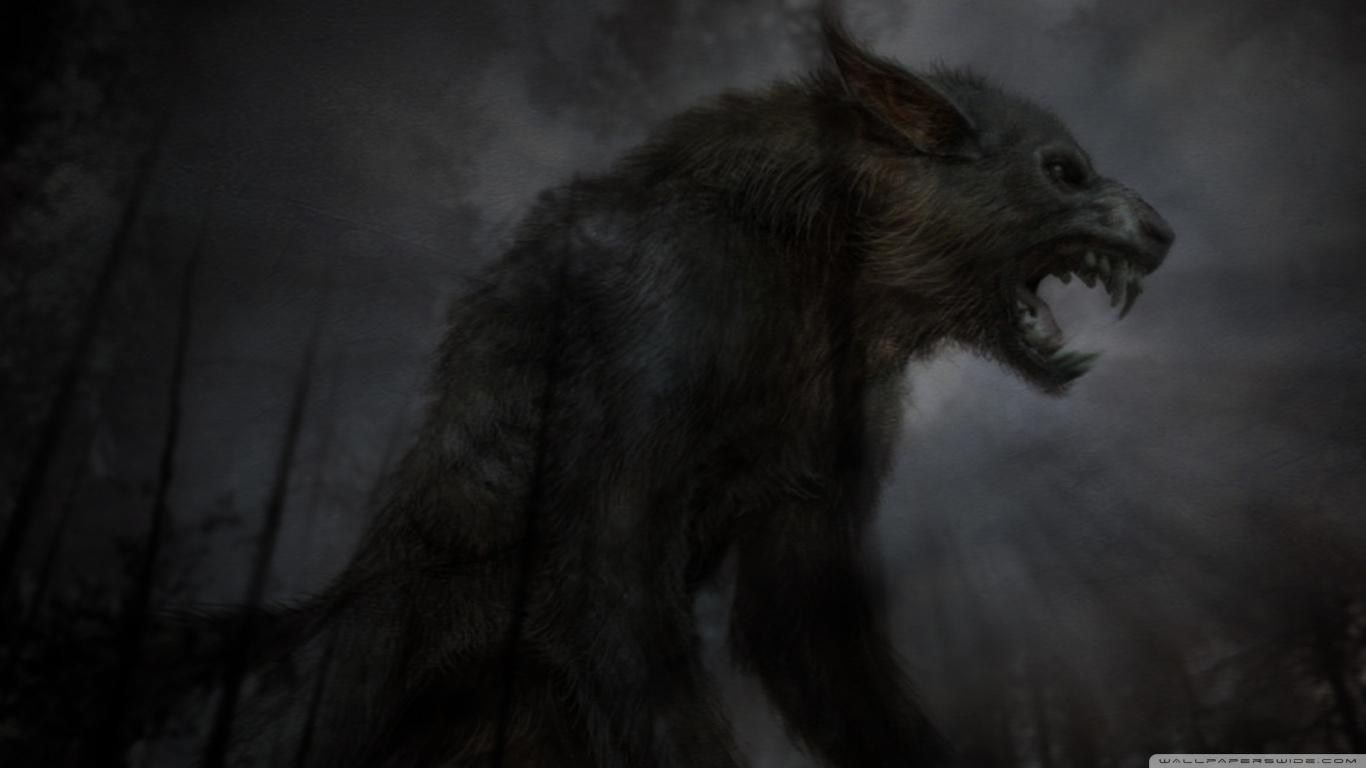 Hd 16 - - Black Wolf Wallpaper Art Hd , HD Wallpaper & Backgrounds