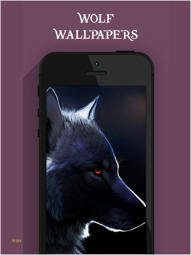 Black Wolf Wallpaper Inspirational Cool Wolf Wallpapers