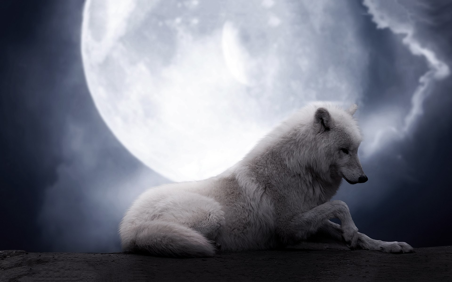 Download - White Wolf Howling At Full Moon , HD Wallpaper & Backgrounds