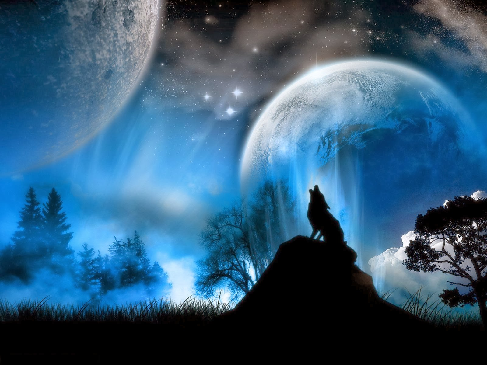 Black And White Wolves 370262 Hd Wallpaper Backgrounds Download