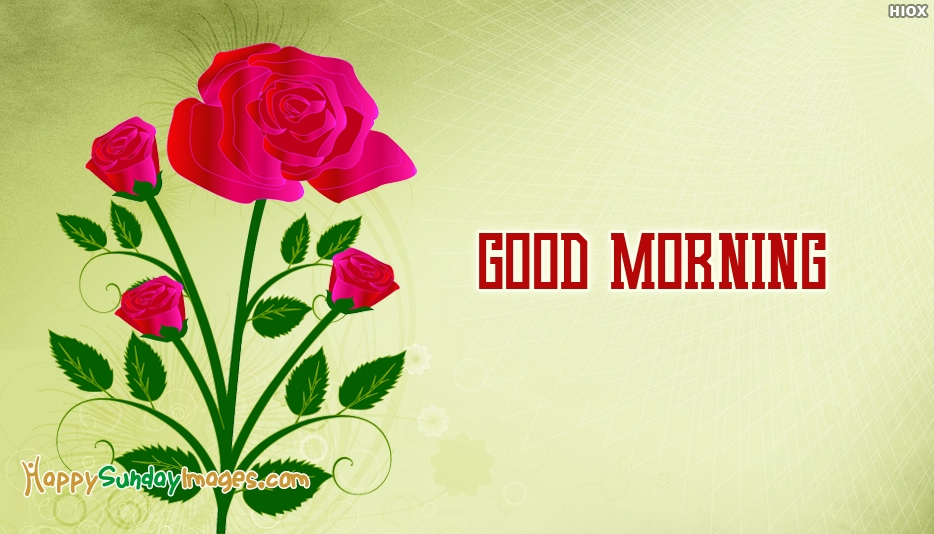 Happy Sunday Images For Wallpaper - Red Rose Flower Drawing , HD Wallpaper & Backgrounds