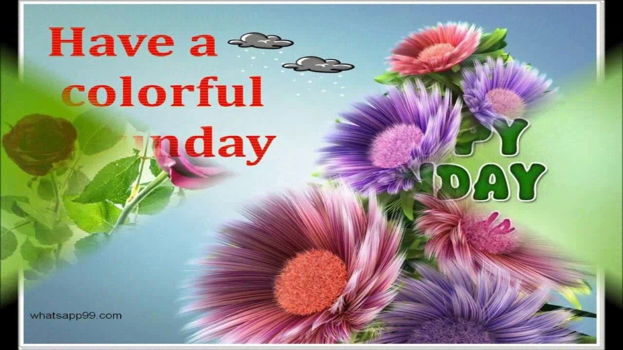 Happy Sunday Wallpapers Wallpaper Cave Sunday Wishes With