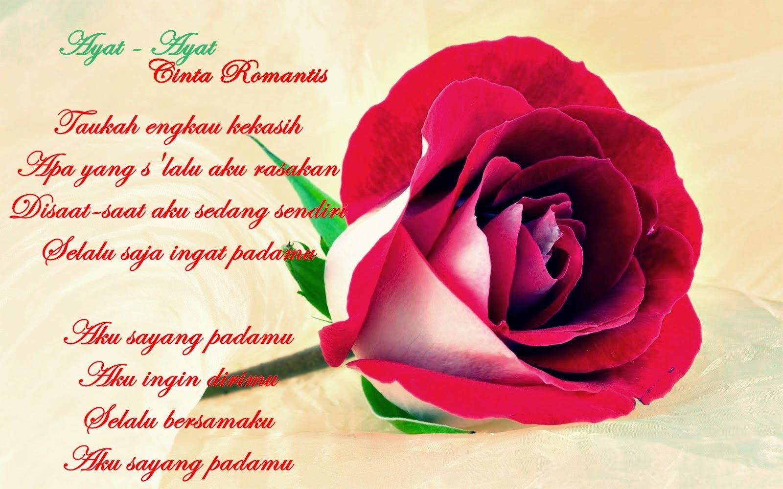 Download Gambar Wallpaper Kata Kata Lucu Gudang Wallpaper
