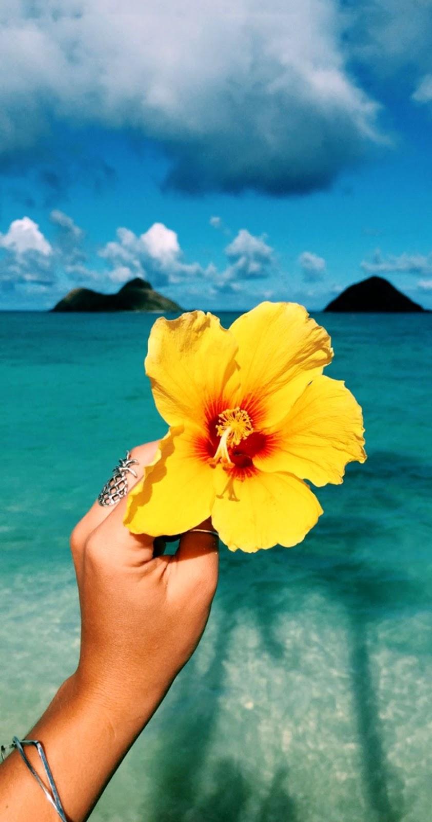Tumblr Summer Wallpaper - Hawaii , HD Wallpaper & Backgrounds