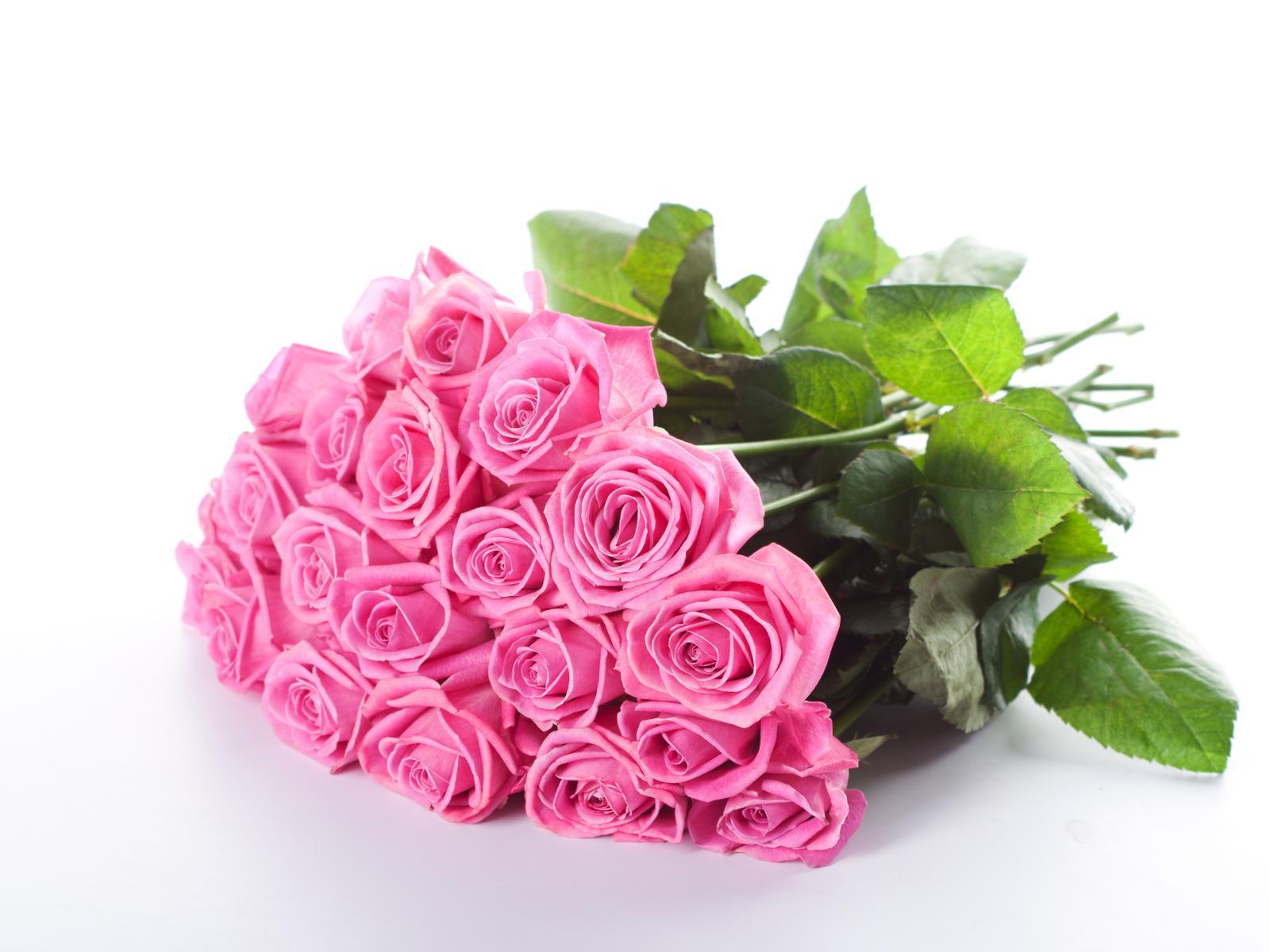 6 Gambar Bunga Mawar Cantik Cocok Untuk Wallpaper Pink Rose Flower Bokeh 45275 Hd Wallpaper Backgrounds Download