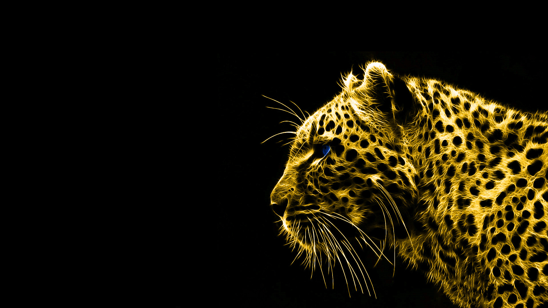 Black Gold Wallpaper Mobile Black And Gold Animals 49632 Hd