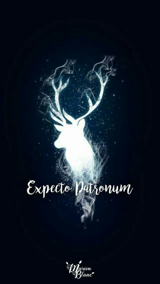 Harry Potter Wallpapers Wallpaper Harry Potter Poudlard